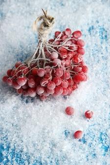 Rode bessen van viburnum met ijskristallen, op blauwe achtergrond