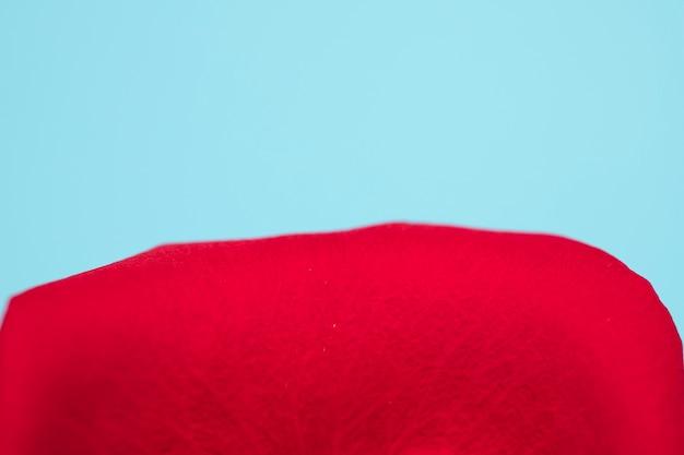 Rode bloemblaadjemacro op blauwe achtergrond