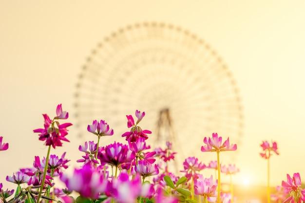 Rode bloemen en reuzenrad in de verte