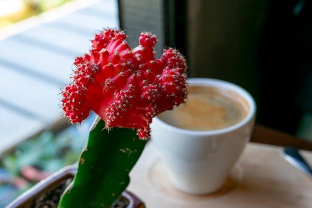Rode bloemen op de koffietafel.