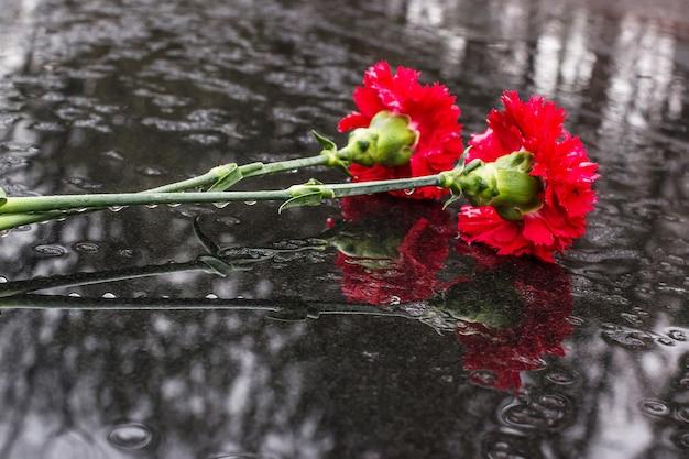 Rode bloemen op zwarte steen. viering van de verjaardag van de overwinning in de grote patriottische oorlog.
