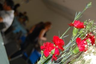 Rode bloemen, planten, rode