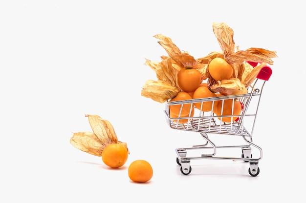 Rode boodschappenwagentje en vruchten van de kaapkruisbes