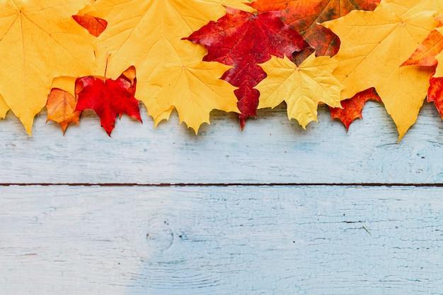 Rode en gele droge herfst esdoorn bladeren, boven op een rij op een blauwe houten achtergrond. val begrip. plat liggend, ruimte voor tekst