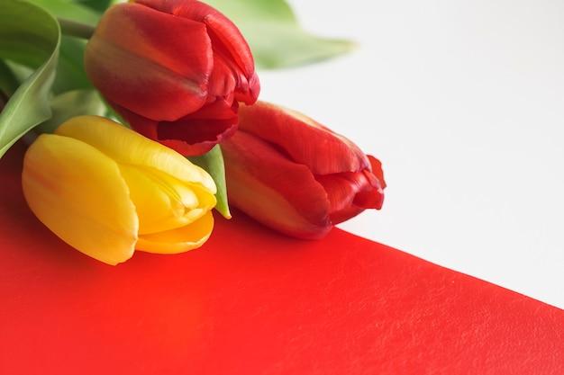Rode en gele tulpen op een witte en rode achtergrond.