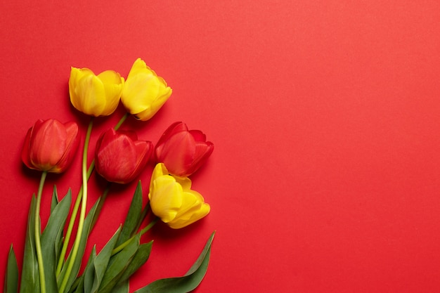 Rode en gele tulpen op rood met ruimte voor tekst