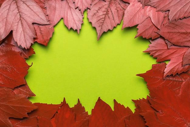 Rode esdoorn bladeren in de vorm van een frame op een groene achtergrond. ruimte voor de tekst. plat leggen.
