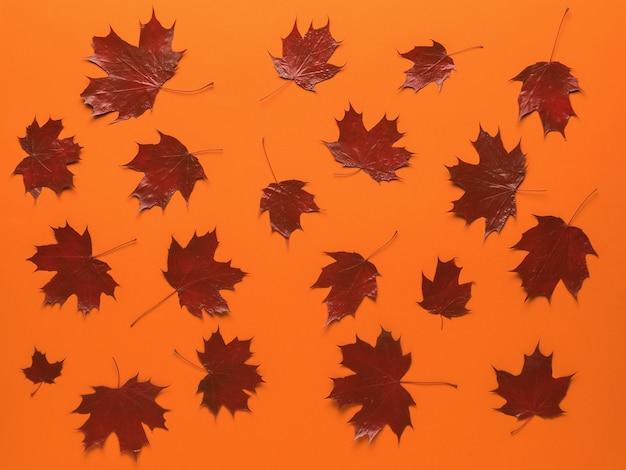 Rode esdoorn herfstbladeren op een oranje achtergrond.