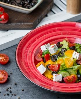 Rode fruitsaladeplaat met gemengde groenten en witte kaas