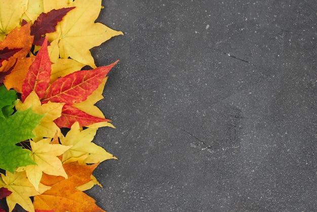 Rode, gele en groene esdoornbladeren op een grijze geweven achtergrond met ruimte voor tekst