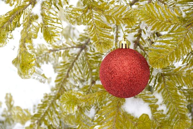 Rode glanzende kerstspeelgoedbal die aan een dennentak in de sneeuw hangt