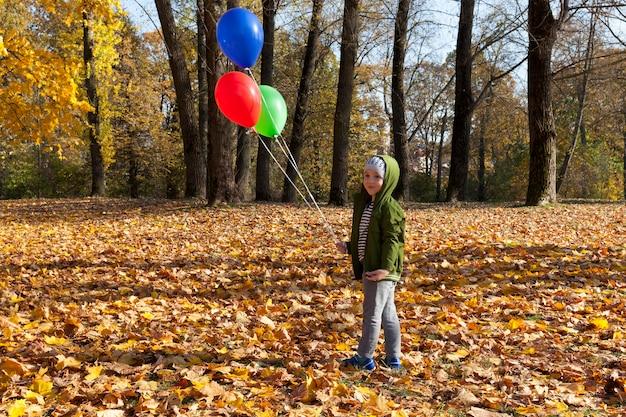 Rode groene en blauwe ballonnen met helium op een achtergrond van gele bomen in herfst park, de ballonnen worden bewaard en de jongen loopt in het park