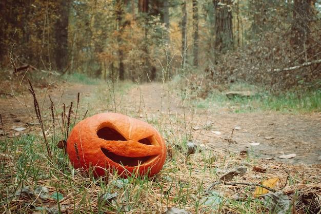 Rode halloween-pompoen in het herfstbos staat op een landweg jack o lantern op het gras