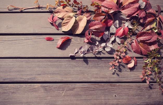 Rode herfstbladeren op oude houten achtergrond