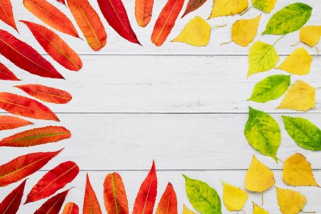 Rode herfstbladeren patroon, framerand met kopie ruimte.