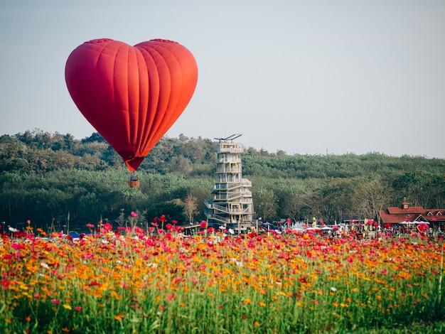 Rode hete luchtballon in de vorm van een hart over het gebied van de kosmosbloem