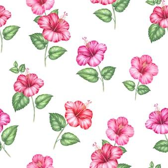 Rode hibiscus bloemenpatroon.