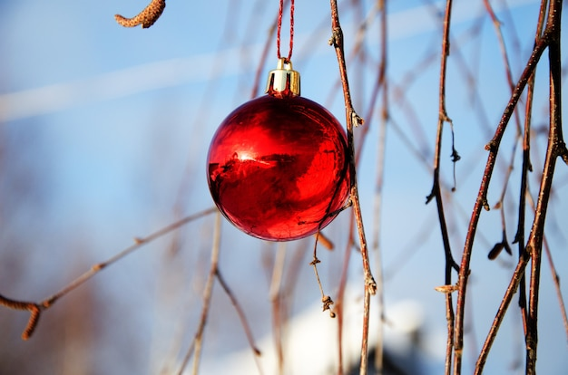 Rode kerstbal opknoping op berk takken