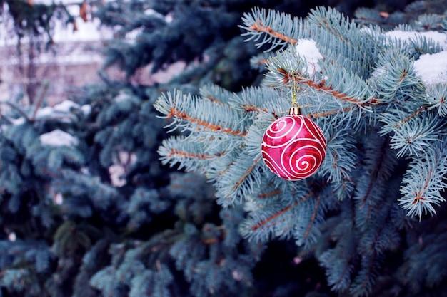 Rode kerstbal opknoping op fir takken in de winter, close-up met lege ruimte voor tekst, wenskaart concept.
