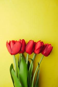 Rode kleur tulpenbloem tegen geel oppervlak