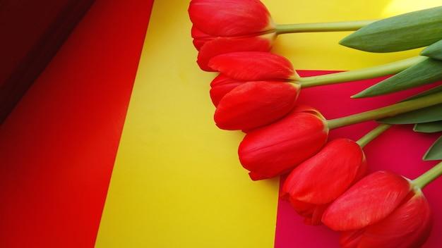 Rode kleurrijke tulpen op een kleurrijke achtergrond, in een platliggende compositie met kopieerruimte