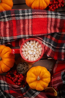Rode kop cacao met marshmallow, decoratieve pompoen. herfststemming, opwarmend drankje. gezellige sfeer