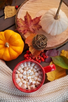 Rode mok met cacao en marshmallows. herfststemming, opwarmend drankje