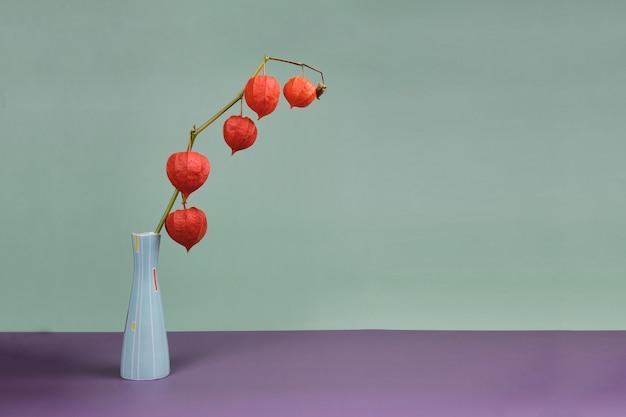 Rode physalis bloemen in een vaas