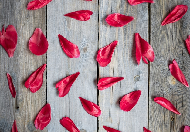 Rode pioenbladeren op houten achtergrond, bloemenpatroon