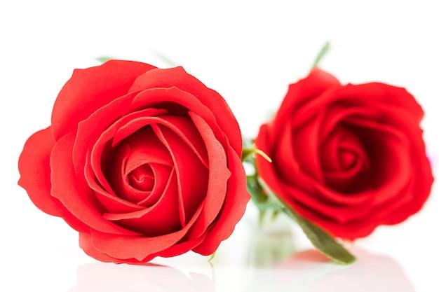 Rode plastic nep rozen op witte achtergrond voor valentijnsdag