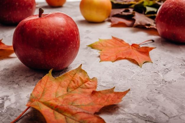 Rode rijpe appel met esdoorn bladeren