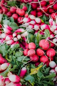 Rode ronde vruchten op groene bladeren