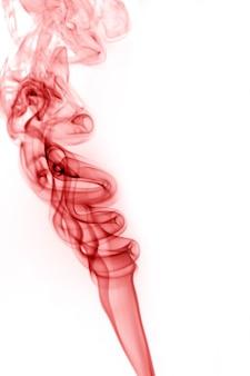 Rode rook op een witte achtergrond