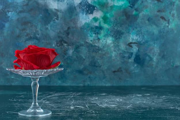 Rode roos in een glazen voetstuk, op de blauwe achtergrond.