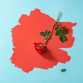 Rode roos op geverfd rood en pastelblauw.