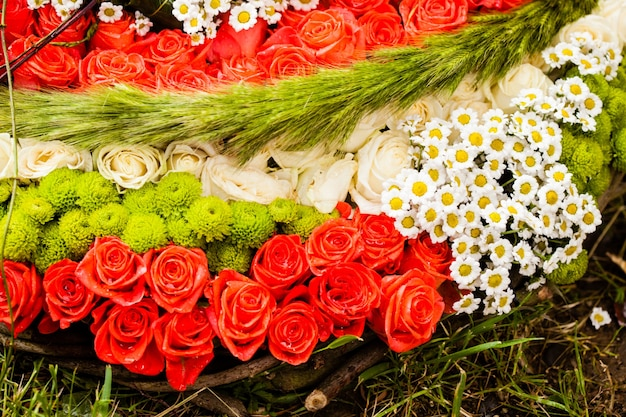Rode rozen en kamilles als patroon voor bruiloftsontwerp