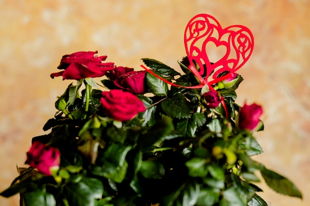 Rode rozen en rood hart. rode bloemen. mooie bos van verse rozen versierd met een hart. groeten