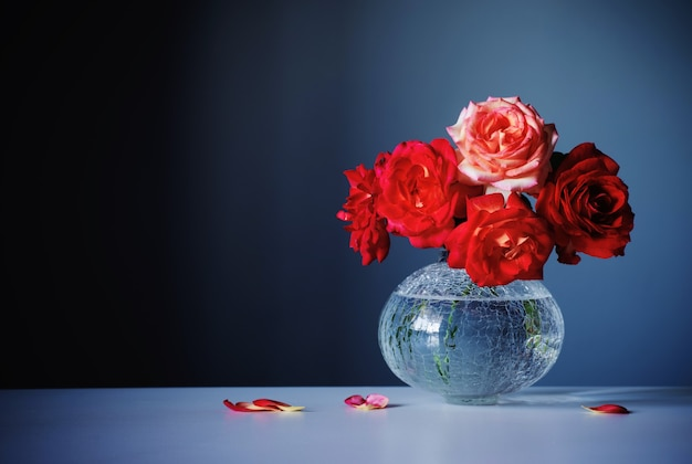 Rode rozen in glazen vaas op donkerblauwe achtergrond