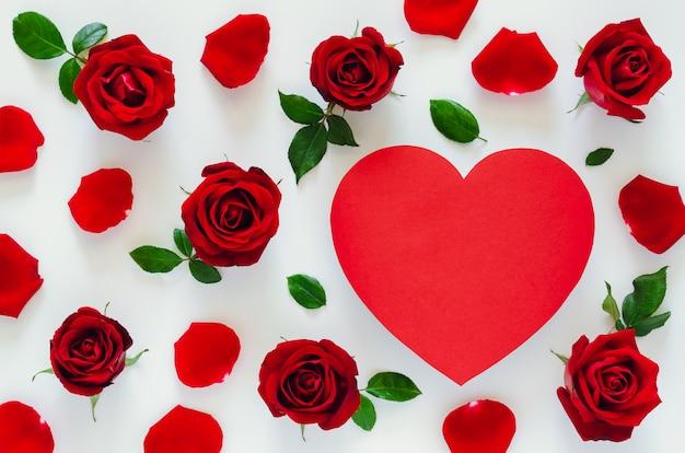 Rode rozen met zijn bloemblaadjes en bladeren op wit