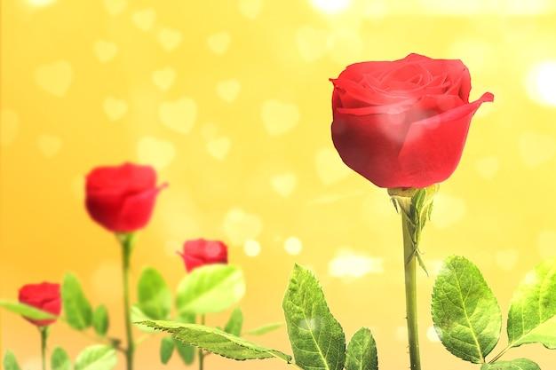 Rode rozen op een gele muur. valentijnsdag