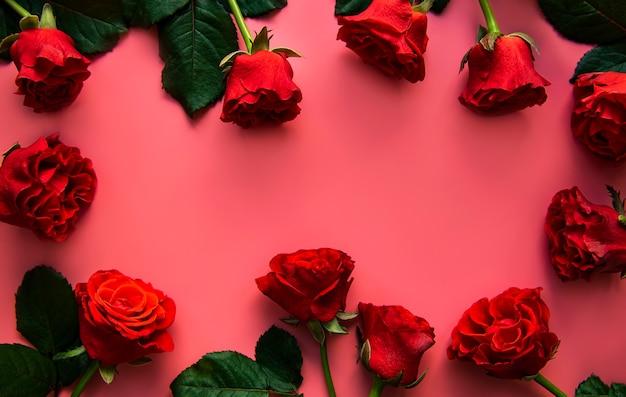 Rode rozen op een roze ondergrond