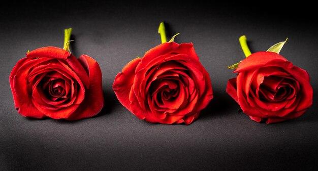 Rode rozen op een zwarte ondergrond