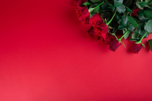 Rode rozen op rode achtergrond. valentijnsdag plat.