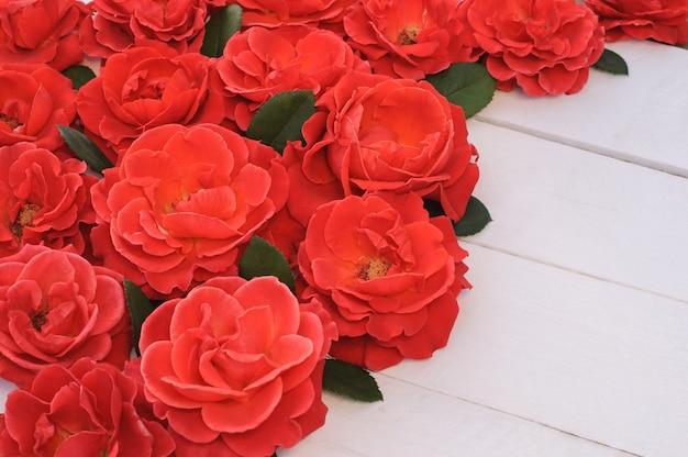 Rode rozen op witte houten achtergrond, wenskaart.