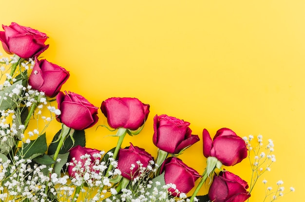 Rode rozenbloemen