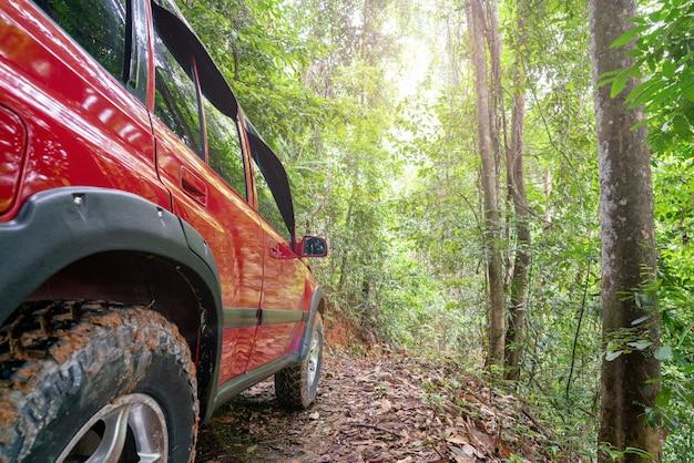 Rode suv zomer auto en over de weg in de bergen rijden in het bos