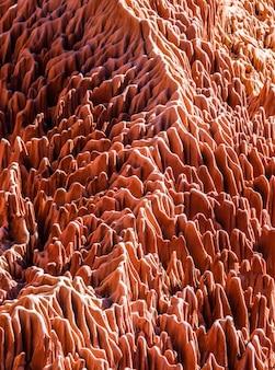 Rode tsingy. typisch landschap. madagascar.