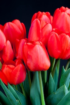 Rode tulpen met heldere bloemblaadjes in een boeket