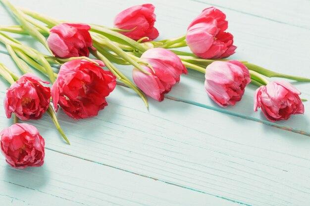 Rode tulpen op blauwe munt houten achtergrond