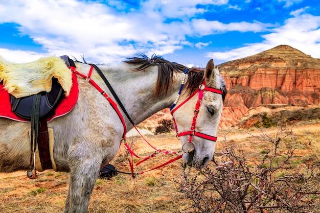 Rode vallei in cappadocië, turkije.